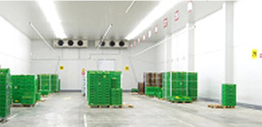 Development of Warehouse and Inventory Management Systems